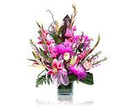 פרחים בשנקין
