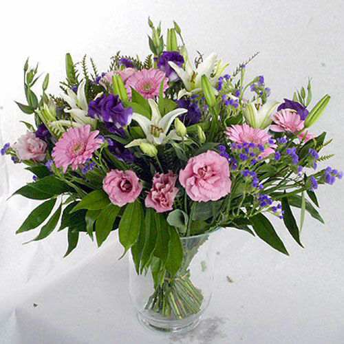 ורד קורל - פרחים בת ים